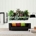 el jardín vertical de la pared cuelgan plantadores de la planta