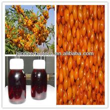 Supply organic seabuckthorn seed oil / bulk seabuckthorn oils