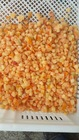 frozen vegetable tomato dices for sale
