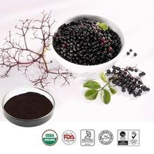 Honghaoherb ingredients pure black chokeberry extract