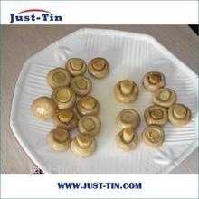 Nova safra nome científico de cogumelo para venda pedaço fatia e stem p & s todos os tipos de cogumelo com preço de fábrica