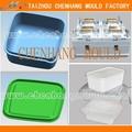 Caixa de plástico do molde de injeção/projeto de molde e fazer