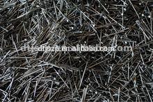 High quality common nail iron nail factory,