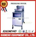Poulet friteuse sous pression/vide friteuse/friteuse électrique