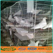 Paloma uso, Diseño de la capa de carreras paloma jaula para cría