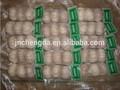 2014 fresco chino ajo natural precio