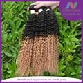 deux tons vague humaine extensions qualité aaaaa non transformés cheveuxindiens vierge distributeurs en gros