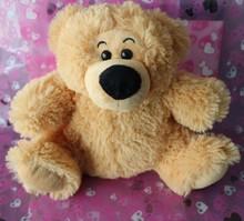 plush teddy bear with a sublimation T--shirt