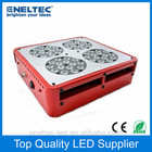 2 years warranty! Wholesale price flower led grow lights