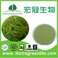 Approvisionnement en usine de qualité supérieure fucoidan/d'algues brunes extrait en poudre avec le prix concurrentiel oem capsule comprimés,