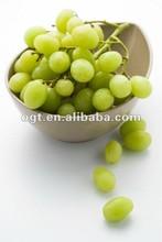 Novelty fruit bowl