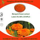 marigold lutein extract