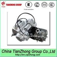 Tianzhong Brand Old Mini 4 Stroke Single Cylinder Gasoline 110cc Engines
