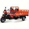 China Top Ten marca DAYANG motocicleta chopper quadro para venda