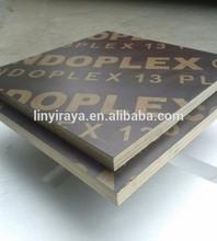 Film faced plywood Eucalyptus core