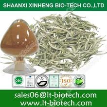 Extracto de té blanco de té de jazmín extracto de snapple téblanco polvo de extracto de té blanco con polyphenonls 90%