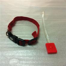 Hot sale led dog collar