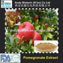 Andy Biotech Supply High Standard 20% Pomegranate Polyphenols