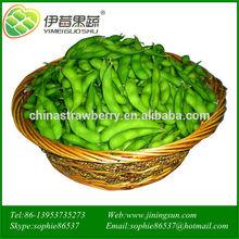 hot sell green soybean frozen vegetables
