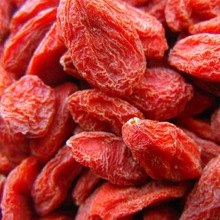 organic goji berry/china dried goji berry price