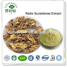 30% 85% 90% 98% natural baicalin radix scutellariae extract