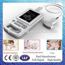Animal ultrasound scanner for sheep