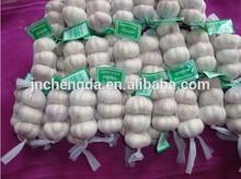 chinese fresh garlic for sale