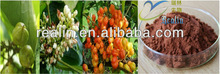 natural guarana extract 10%, 20% guarana seed extract