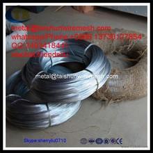 Hot galvanisées placage fer fil ----- GW1043S