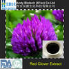 Best Selling 100% Natural 20% Isoflavones Red Clover Powder Extract