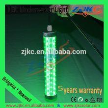 dalgıç IP68 su geçirmez paslanmaz çelik disko topu ışık 12v