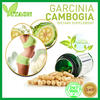 /product-gs/garcinia-cambogia-extract-capsules-maximum-proven-weight-loss-60138526428.html