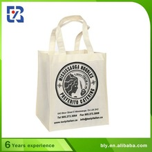 Widely Used Lunch Tote Bag