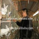 Cheap Metal Rabbit Cage Design for Poultry Farm