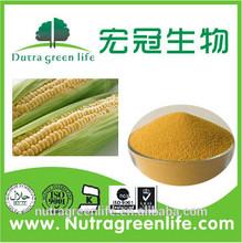 Corn Gluten Meal /Corn protein yellow power/Animal Feed