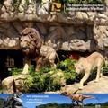 Meu dino- animatrônicos estátua animal brinquedos leão