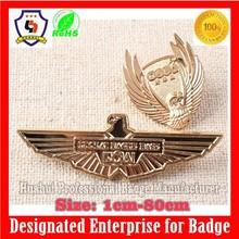 custom school uniform badges for clothes, wing lapel pin badge (HH-badge-703)