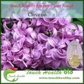 touchhealthy fonte natural de extrato de cravo eugenol oil com fda registrados