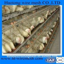 chicken breeding cages cheap bird cage