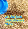 cat litter dust-free best clean cat sand oem