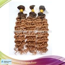 Raw unprocessed virgin Indian ombre hair, Virgin Indian deep curly hair