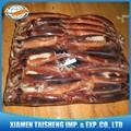 Congelado Illex Argentino calamar gigante