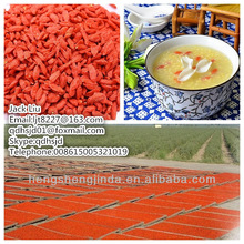 2014 the lowest goji berries for sale