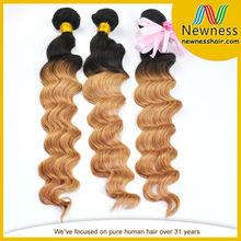 One Donor 100% Human Hair Weave Virgin Brazilian Hair Weft