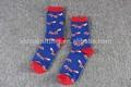 moda y colorido con la imagen de los animales y frutas de punto calcetines chica