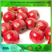 dried hawthorn fruit / hawthorn extract powder