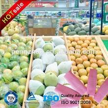 China Vendor direct supply Quality products/EPE Net/ Fruit Apple/Mango/papaya Foam Sleeve