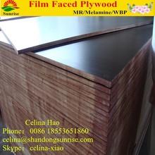 Poplar, eucalyprus, birch, larch, pine core Film faced Plywood