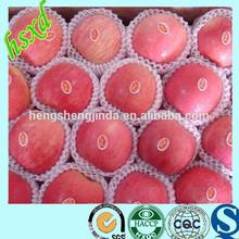 red apple cheap apple holder/chinese fresh fuji apple