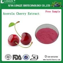 Cherry Extract Acerola Cherry Fruit Powder| Nature Cherry Extract With Vitamin C